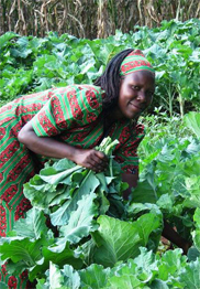 An African farmer enjoys the bounty of her GROW BIOINTENSIVE garden