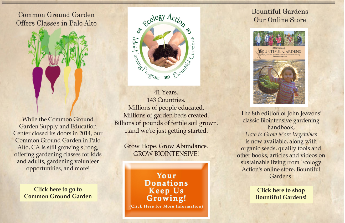 read summary an article from organic gardening But a five-minute walk away is the organic corporate vegetable garden for the nonprofit national gardening association continue reading the main.