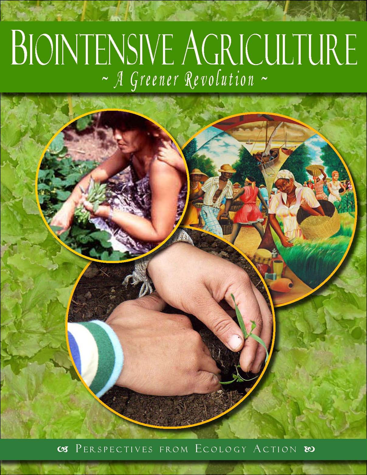 Biointensive Agriculture: A Greener Revolution